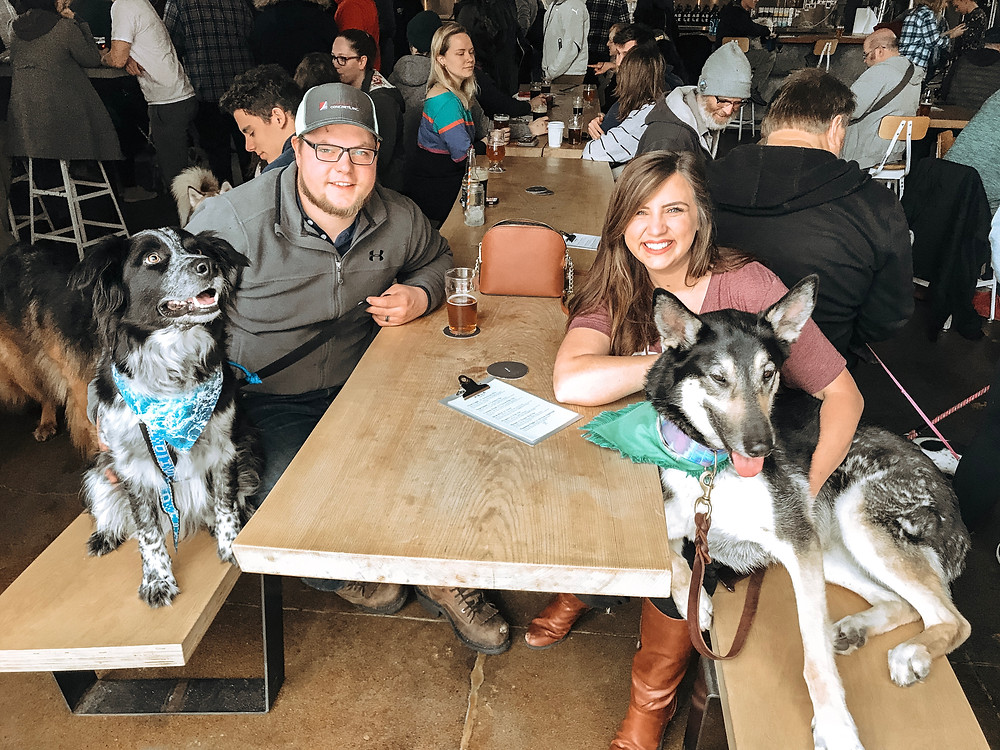 dog friendly breweries