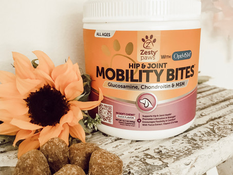 Sharing The Love Of Supplements- With Zesty Paws!