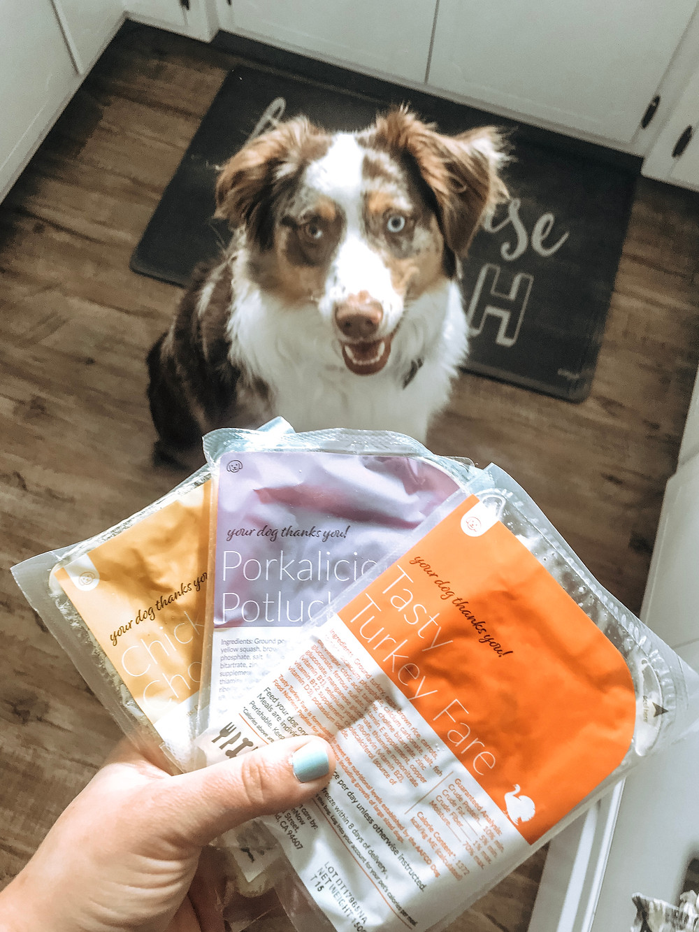 Fresh dog food