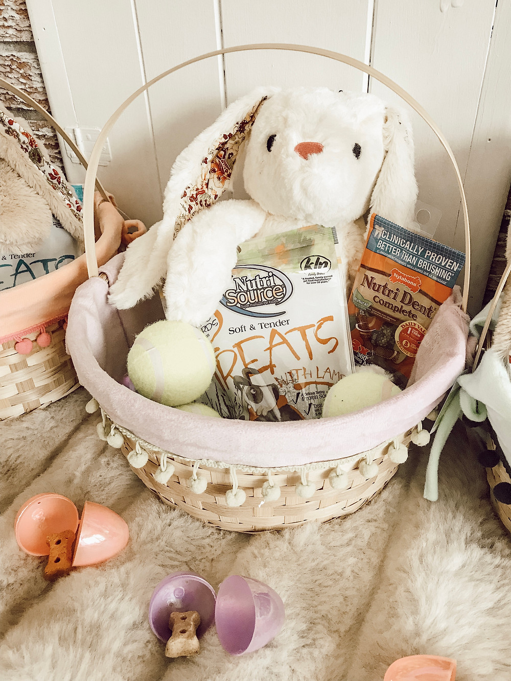 Dog Easter Basket