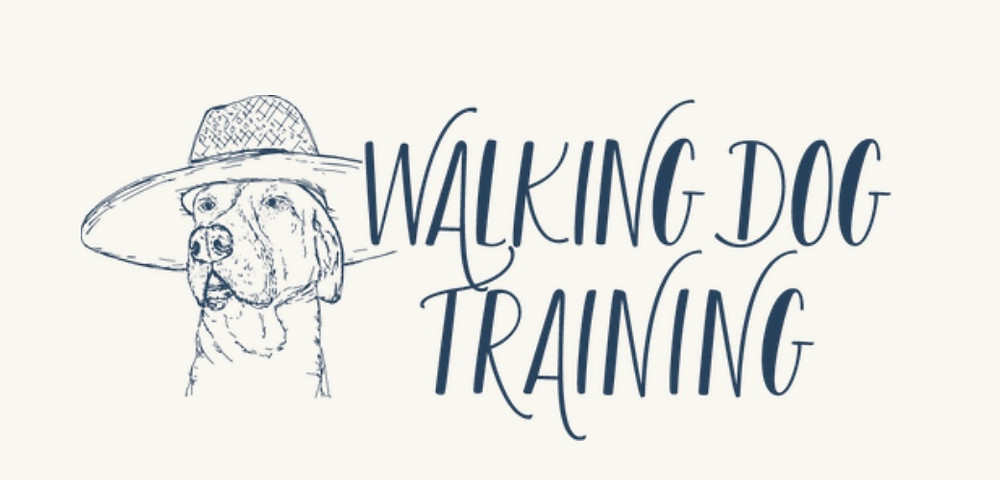 Walking Dog Training