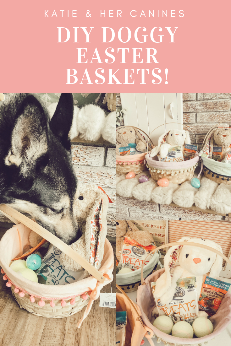 DIY Dog Easter Baskets