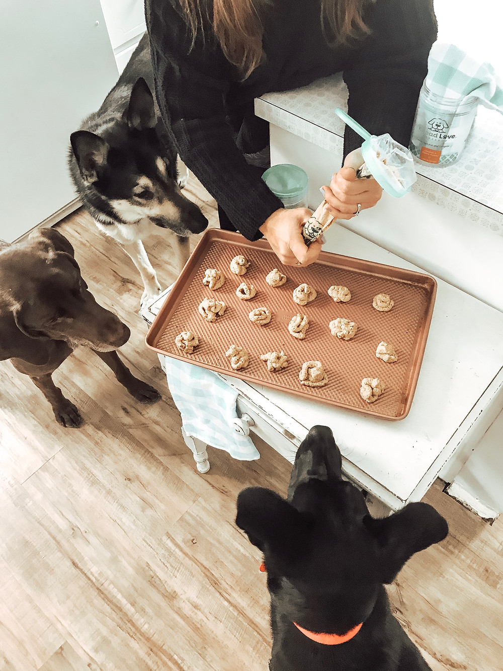 Bake at home dog treats