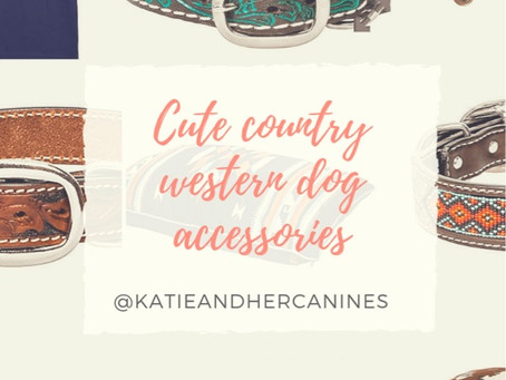 Cute Country Western Dog Accessories