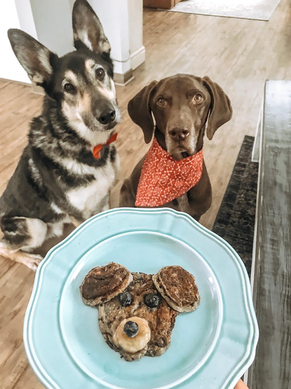 doggy pancakes
