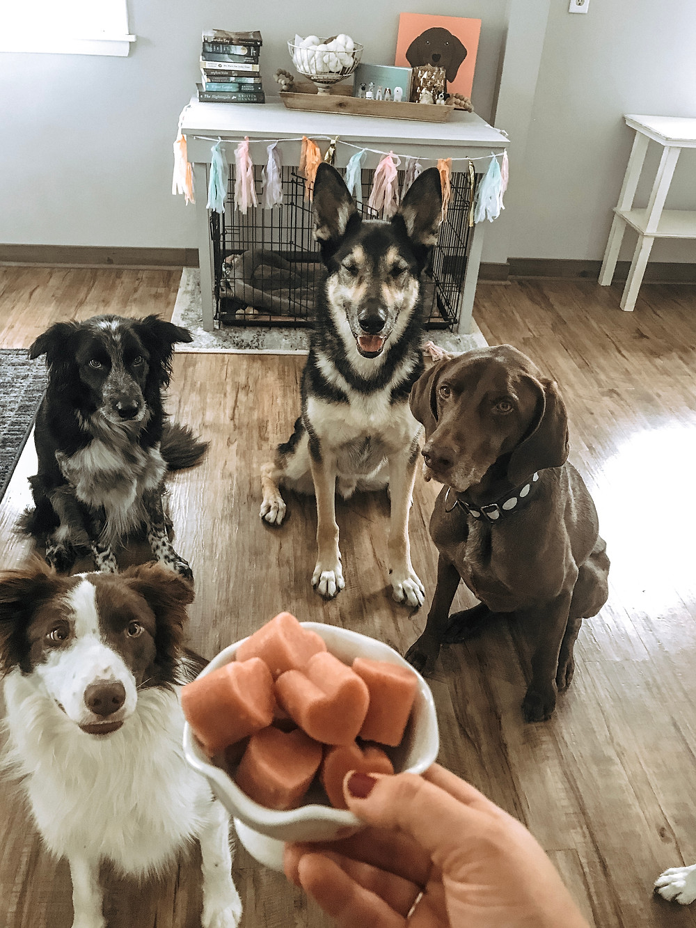 Valentines Day Dog Treats
