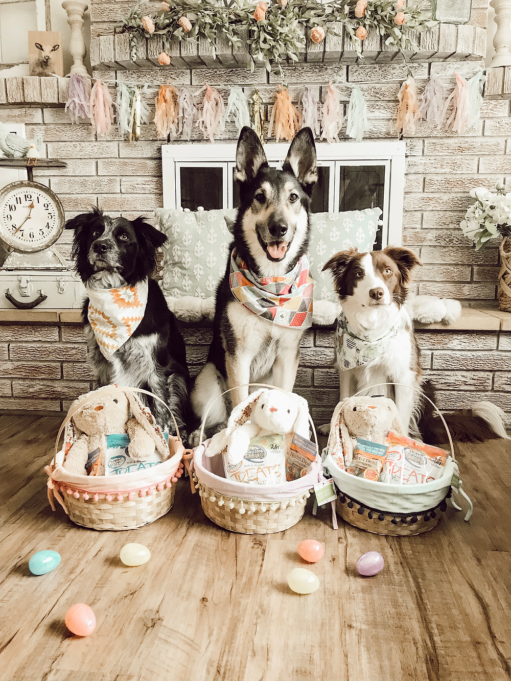 Dog DIY Easter Basket