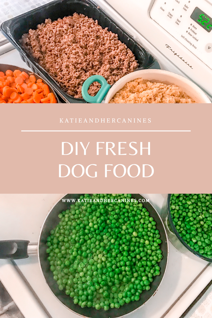 DIY Fresh Dog food