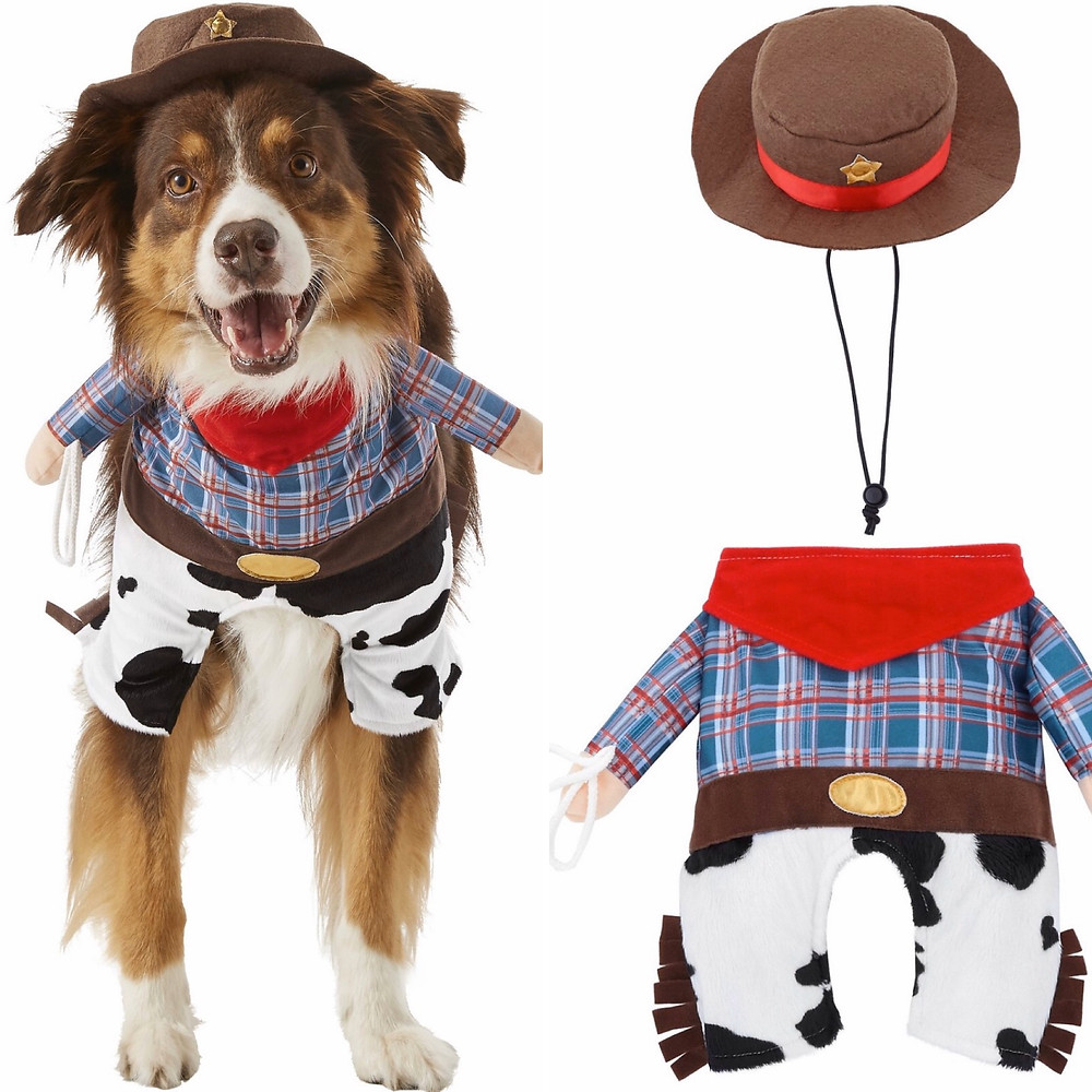 Cowboy Costume Dogs
