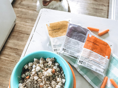 The Fresh Pet Food We Tried And Loved