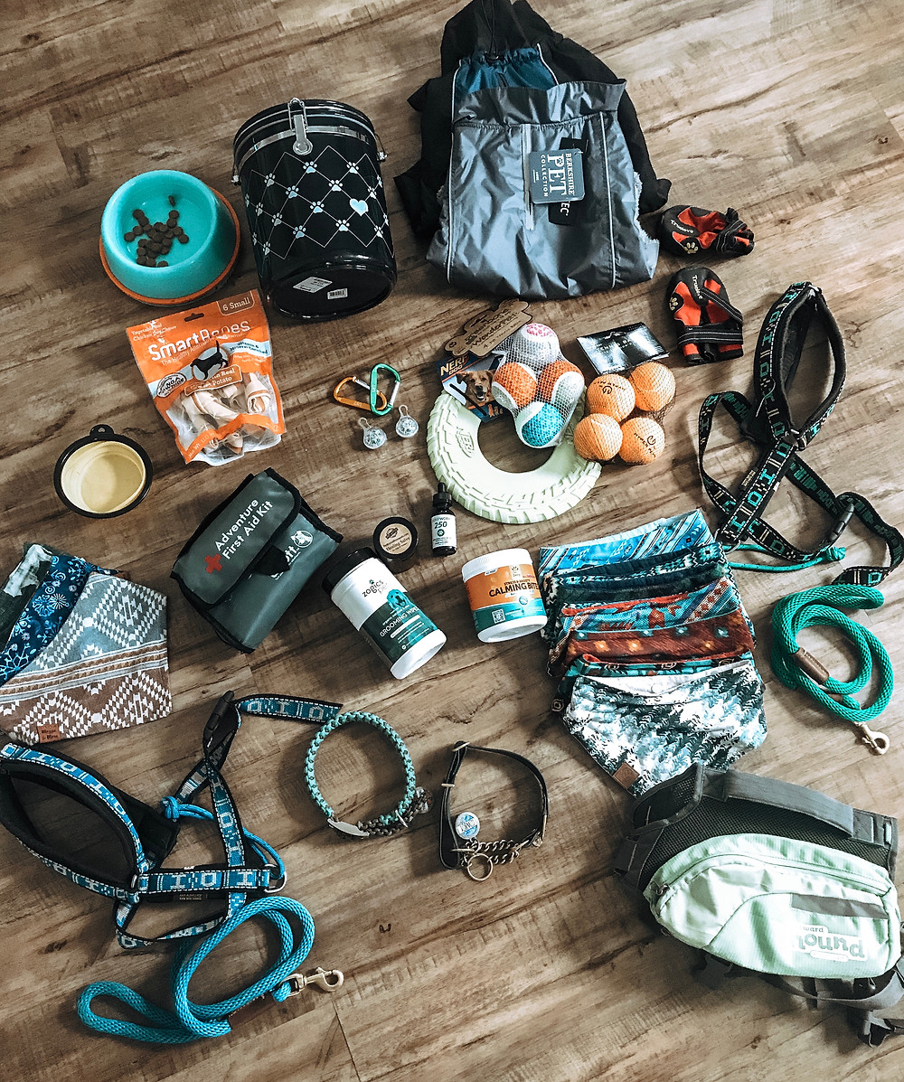 Packing For Dogs On A Road Trip