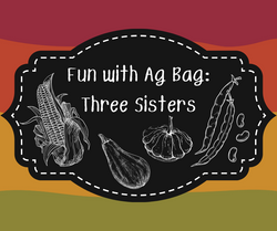 Fun with Ag Bags Three Sisters