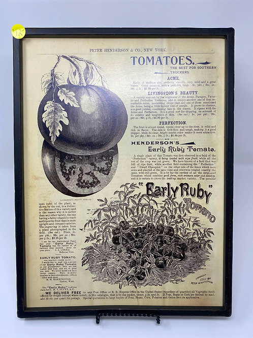 Framed Tomato Ad Print