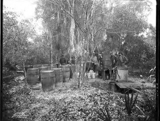 Bribes, Breweries and Moonshine: Prohibition in Manatee County