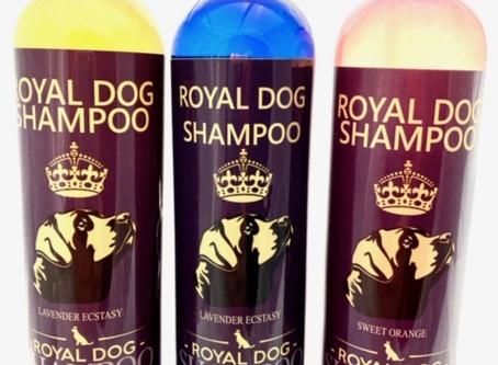 100% Plant-based dog shampoo!