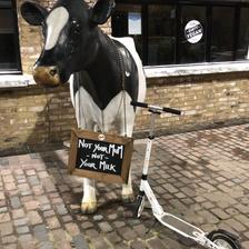 Need some milk?