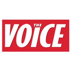 delete the voice