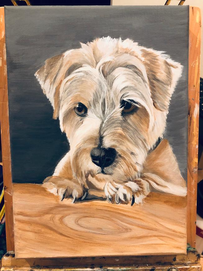 A4 canvas - acrylic painting