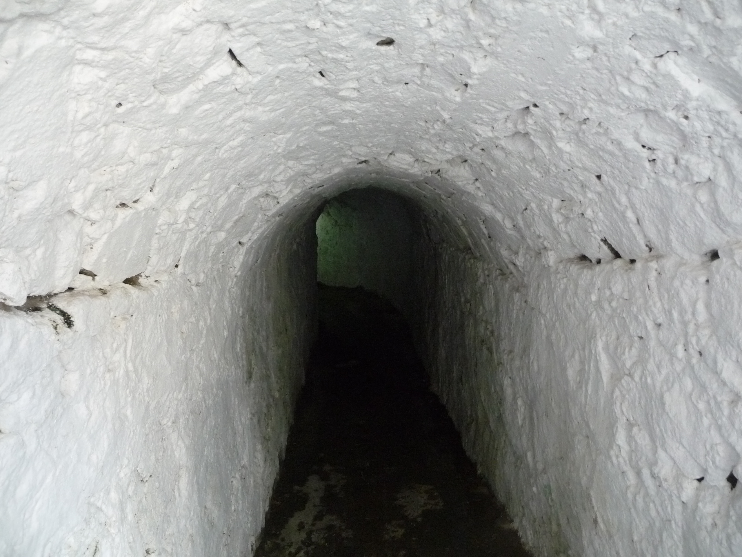 tunnel at fort George