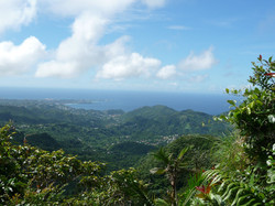 View from Mt Qua Qua trail