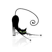 Cat2 Original.jpg