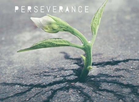 #DailyWritingChallenge: Perseverance