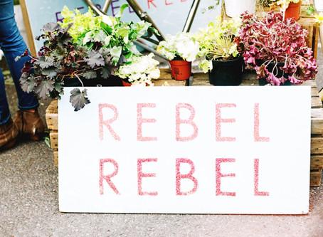 #DailyWritingChallenge: Rebellion