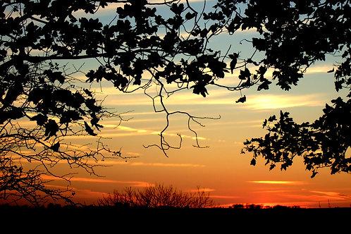Farmhouse Sunset
