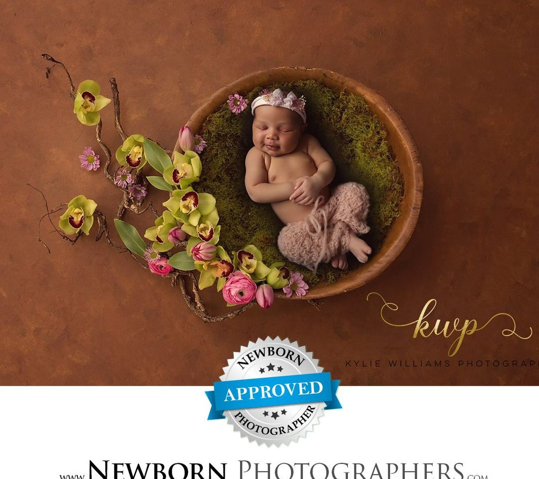 newborn award winning photographer