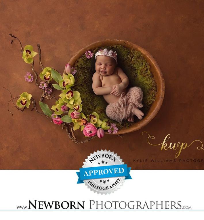 newborn award winning photographer