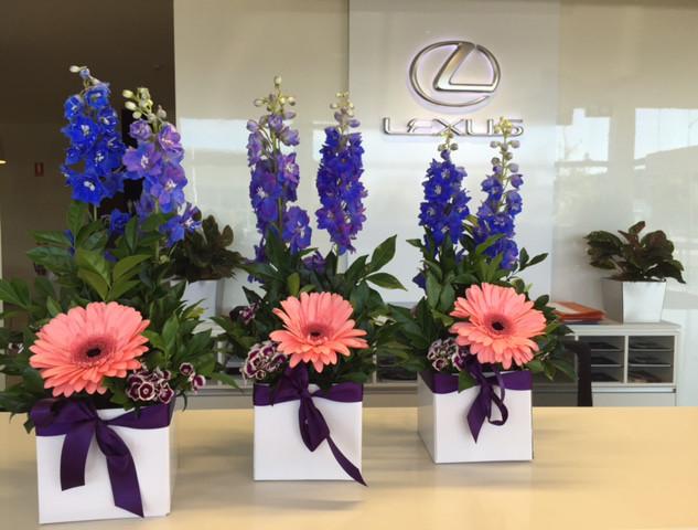 lexus-flowers.jpg