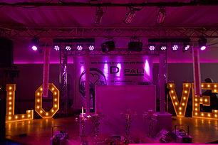Hochzeits DJ Pali.JPG
