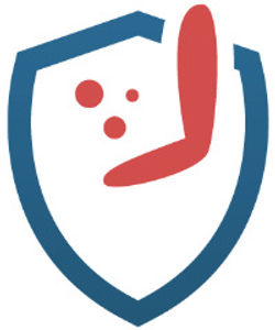 Virguard%20shield_edited.jpg
