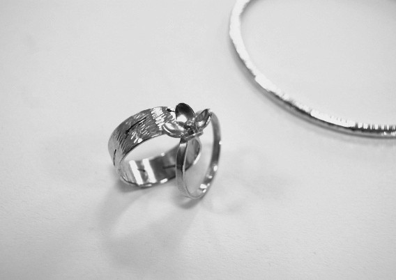 Beginner Ring Making Course