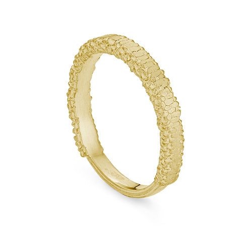 Gold Pressed Willow Catkin Ring