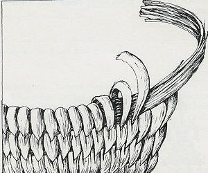 coiling diagram.jpg