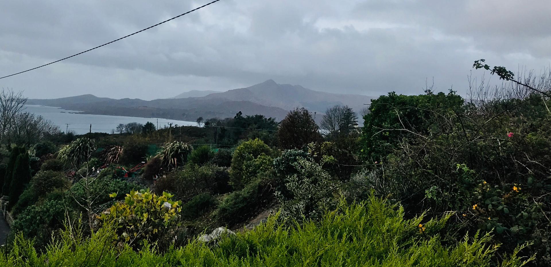 Hill Sea View Cotage