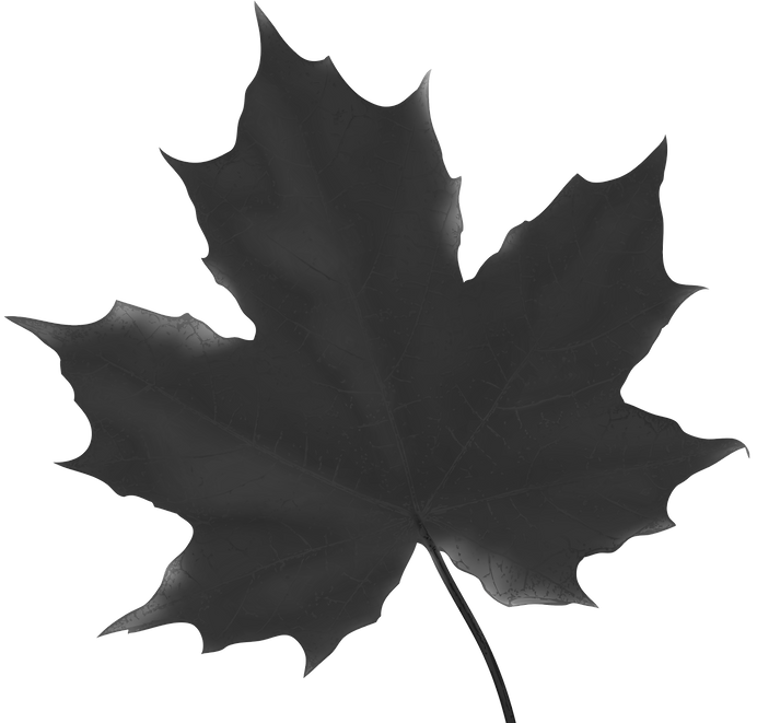 Maple_Leaf_Red_PNG_Clip_Art_Image_edited