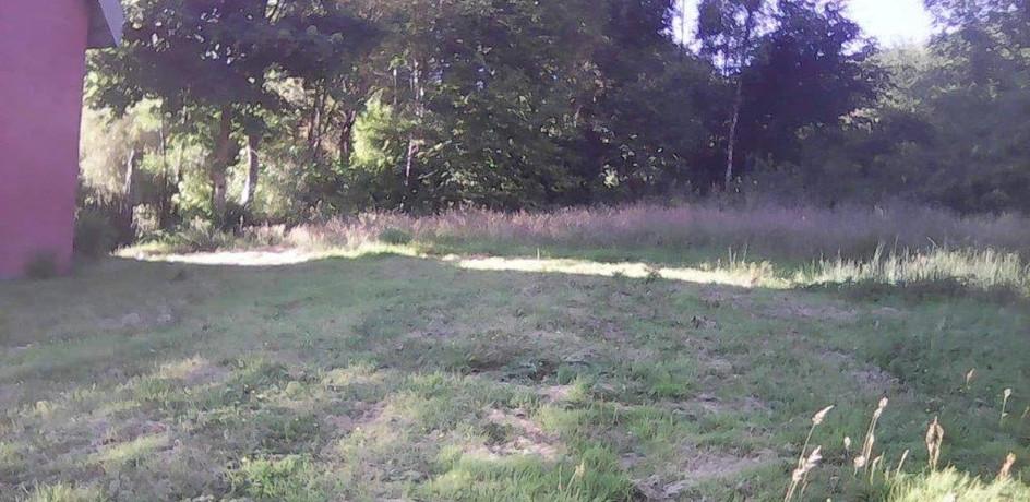 meadow-westsidejpg