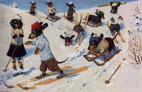 Ski Dogs no text-1.jpg