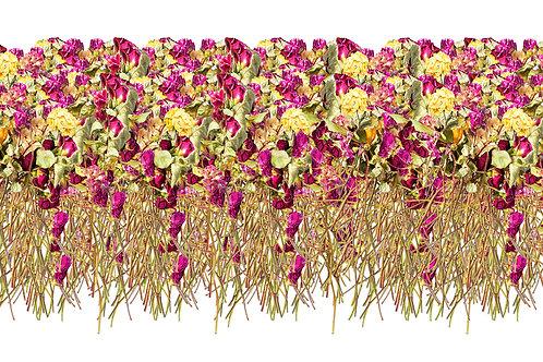 Some Roses For My Little Mushroom 50 x 100 cm
