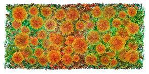 Le jardin des Carthamus 50 x 100 cm