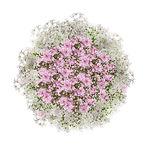 Bouquet pour mariage champêtre