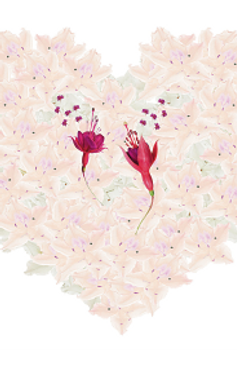 Cartes postales Dancing Flowers Série N° 1