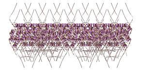 Orchestre Florale 50 x 100 cm