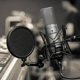 mic 2.jpg