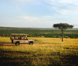 Game drive in the Masai Mara