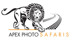 Apex Photo Safaris