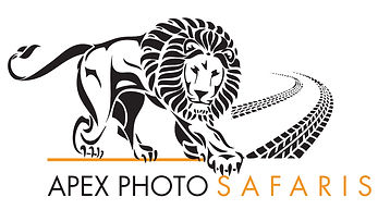 APEX PHOTO SAFARIS LOG.jpg