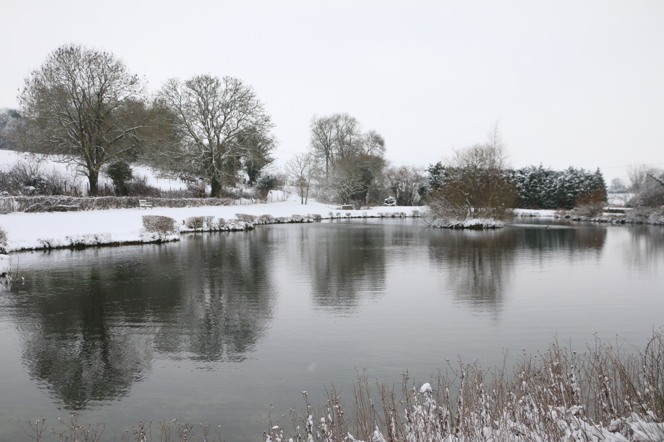 Winter Fishing Hampshire